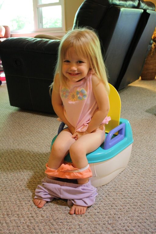 Big Girl Potty Tips For Toilet Training A 3 Year Old