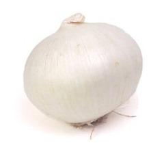 whiteonion7