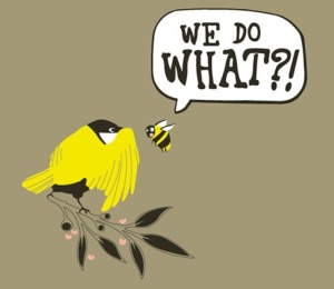 Birds-and-bees.jpg