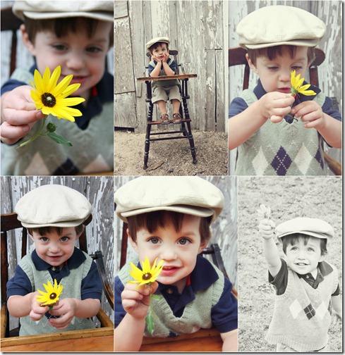 P Collage 6