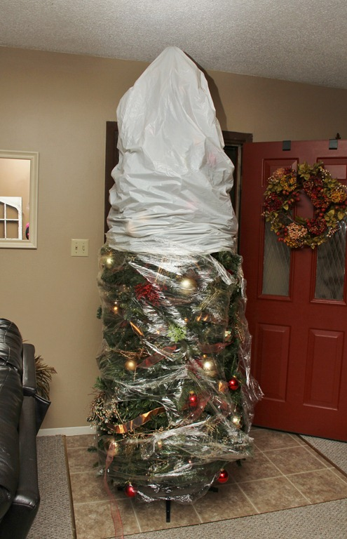 Saran Wrapped Christmas Tree 4 Little Fergusons