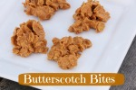 Butterscotch-bites-txt.jpg