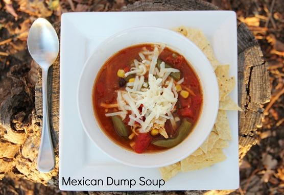 Mexican Dump Soup txt