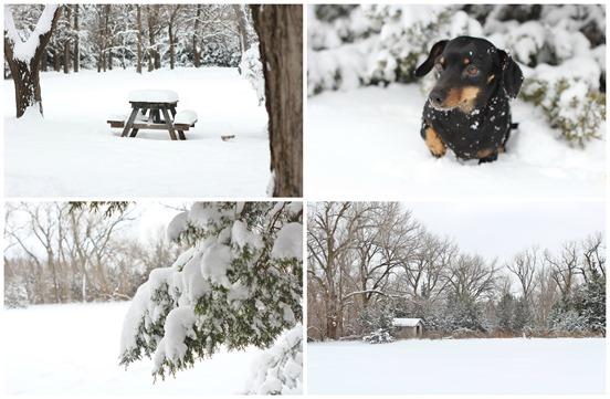 snow blog 1