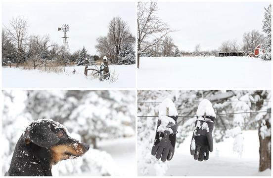 snow blog 2
