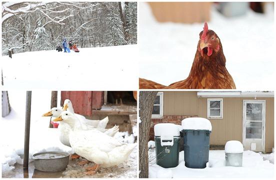 snow blog 3
