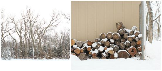 snow blog 4