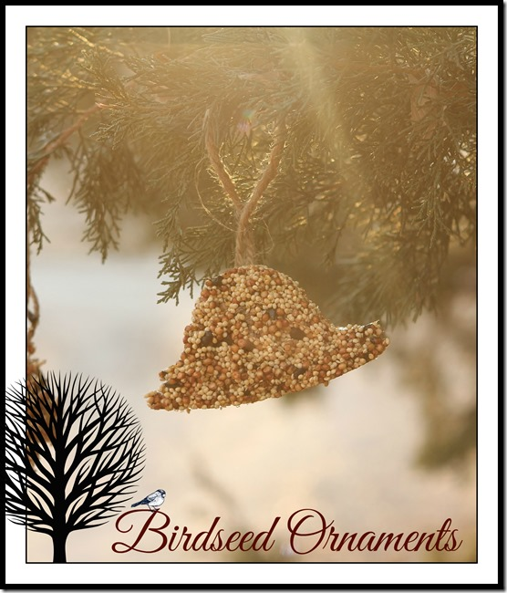 birdseed ornament